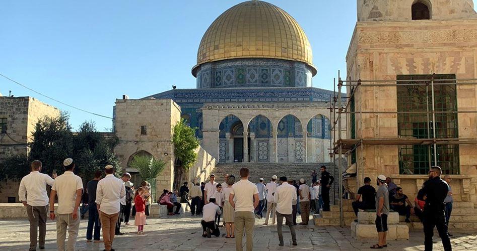 122 settlers storm Al-Aqsa